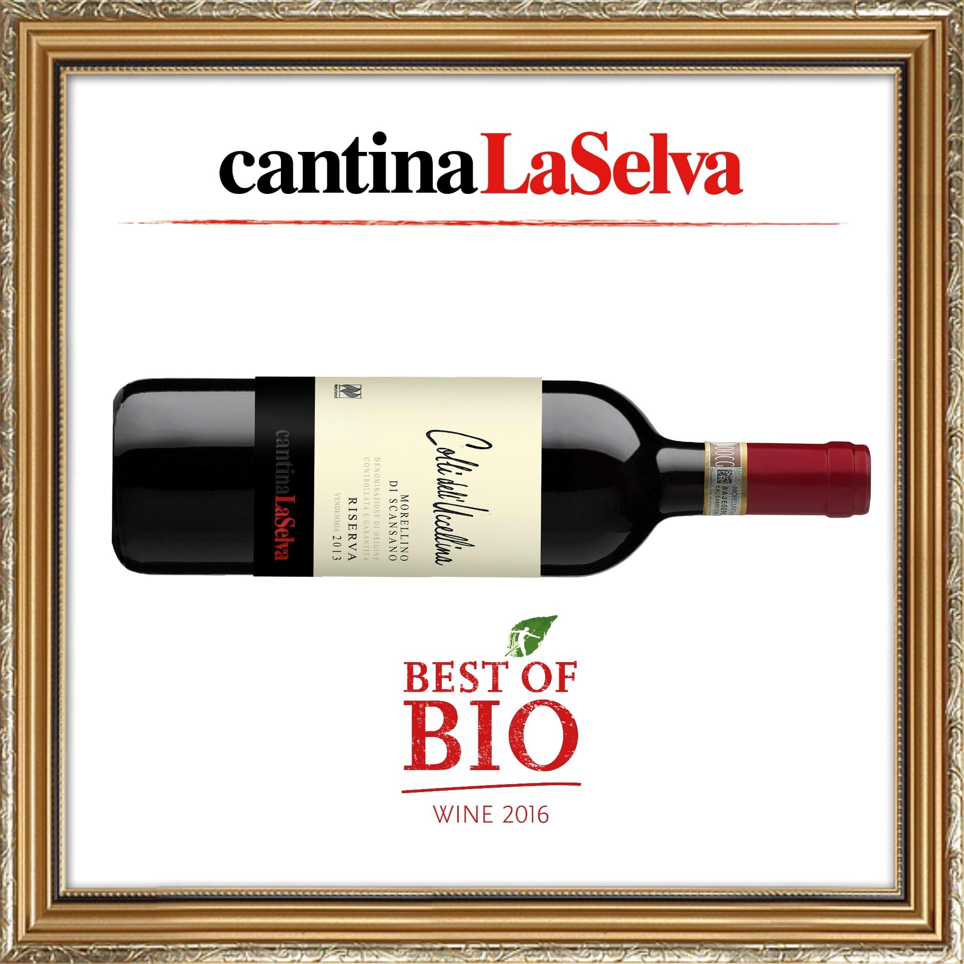 Best_of_Bio_wine