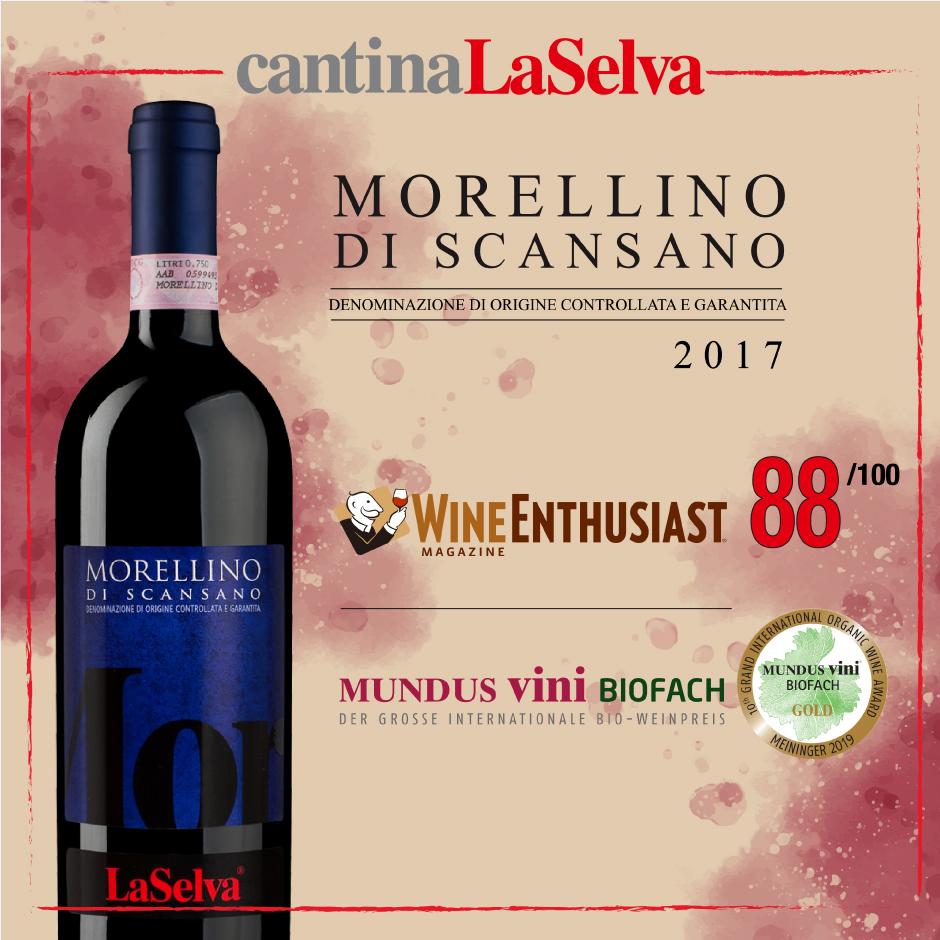 MORELLINO_blog