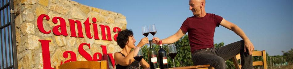 vivere-il-vino